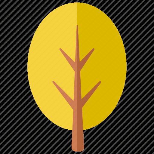 botanical, botany, foliage, forest, park, round, tree icon