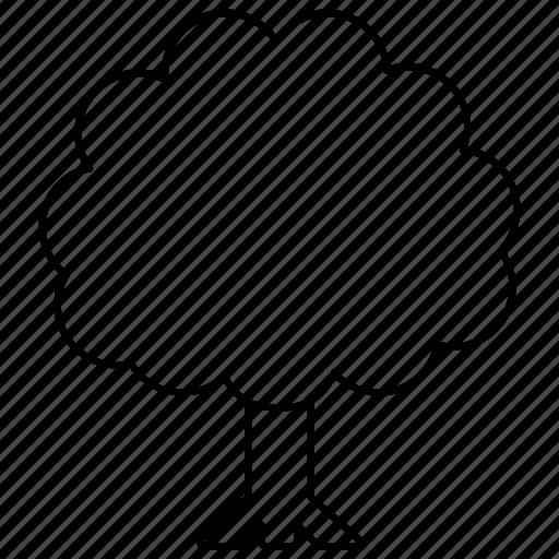ash, deciduous, foliage, generic, parkland, tree icon