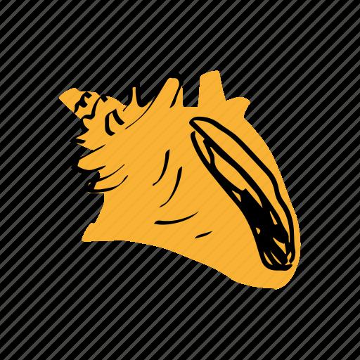 conchiglia, ocean, sea, shell, tropical, yellow icon