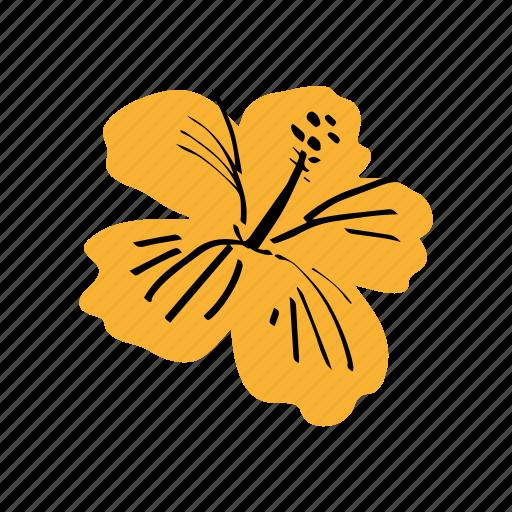ibisco, tropical flower, yellow icon