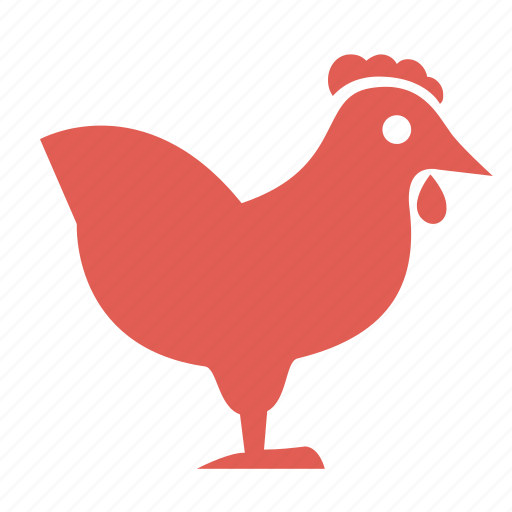 bird, chicken, cooking, diet, food, hen, poultry icon