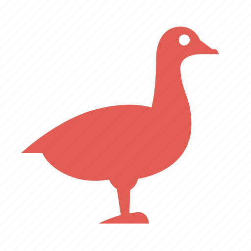 bird, carcasses, cooking, farming, food, goose, poultry icon