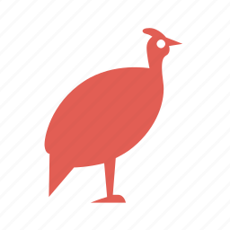 bird, cooking, farming, food, fowl, guinea, poultry icon