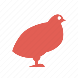 bird, carcasses, cooking, farming, food, poultry, quail icon