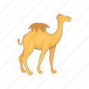 animal, camel, cartoon, desert, design, sign, travel icon
