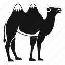 animal, arab, camel, desert, emirates, travel, united icon
