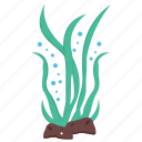 aquatic plant, edible seaweed, fresh seaweed, green algae, seaweed icon