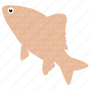 aquatic fish, common fish, fish, freshwater fish, tropical fish icon