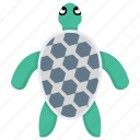 marine turtle, sea animal, sea turtle, tortoise, turtle icon