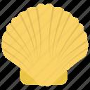 mollusc, mollusk, oyster seashell, seashell, shell icon