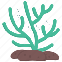 aquatic plant, edible seaweed, green algae, seagrass, seaweed icon
