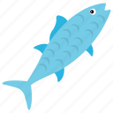 aquatic fish, barramundi, chum salmon, fish, tench icon