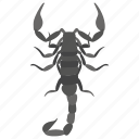 animal, cartoon scorpion, insect, scorpion, sting insect icon