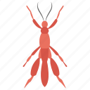 arachnids, bug, cartoon insect, insect, scorpion icon