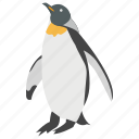 animal, flightless bird, penguin, seabird, sealife icon