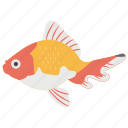 aquaculture, aquatic, fish, freshwater fish, goldfish icon