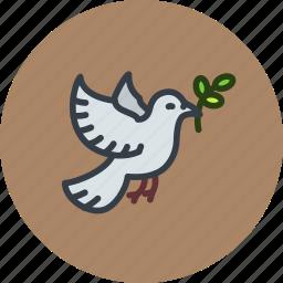 dove, olive, pax, peace, world icon