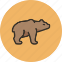 animal, bear, brown, grizzly, predator, white icon