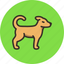 animal, dog, free, friend, homeless icon