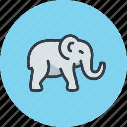 animal, bishop, elephant, indian, indian tea, mammal icon