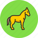 mare, horse, stallion, equine, animal