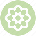 chamomile, flower, leaves, nature, plant icon