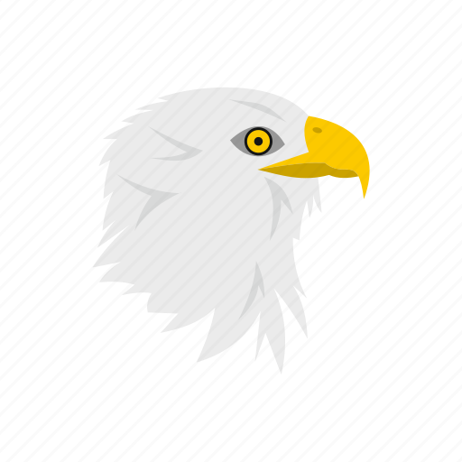 bald, bird, day, eagle, independence, patriotism, usa icon