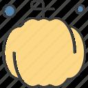 america, pumpkin, usa icon