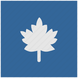 blue, canada, deep, leaf, nature, square icon