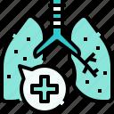 lung, anatomy, medical, organs