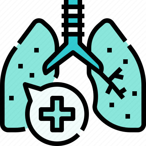 Lung, anatomy, medical, organs icon - Download on Iconfinder