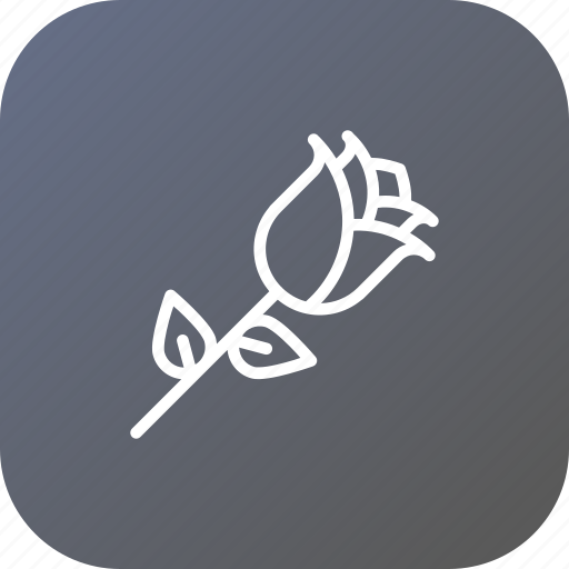 day, flower, love, nature, propose, rose, valentine icon