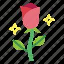 aroma, blossom, flower, rose icon