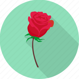 cupid, love, propose, romance, romantic, rose icon