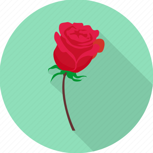 cupid, love, propose, romance, romantic, rose icon