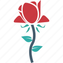 blooming, flower, freshness, rose, rosebud icon