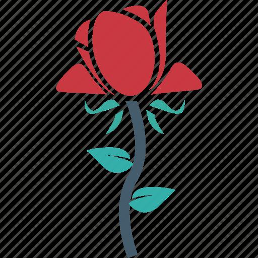 blooming, flower, freshness, rosebud icon