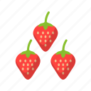 berry, fruit, strawberry, sweet icon