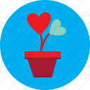 flower, flower pot, heart, love, pot, valentine icon