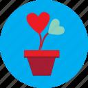 flower, flower pot, heart, love, pot, valentine