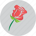 flower, heart, love, propose, rose, valentine icon