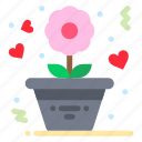flower, love, romance, rose icon