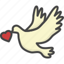 colored, heart, holidays, love, pigeon icon