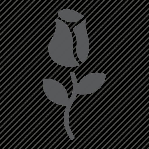 Floral, flower, love, nature, plant, rose, valentines icon - Download on Iconfinder