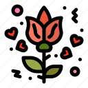 flower, love, rose icon