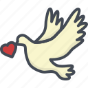 day, heart, holiday, love, pigeon, valentines icon