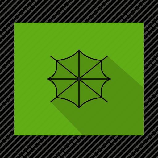 internet, marketing, network, seo, spider, web icon