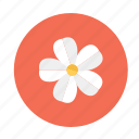 bloom, blossom, flower, flowers, garden, plant icon
