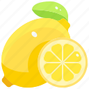 diet, food, fruit, healthy, lemons, organic, vegan icon