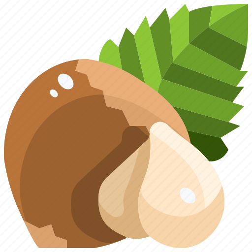 Hazelnut, natural, nut, nuts, organic, seed, seeds icon - Download on Iconfinder